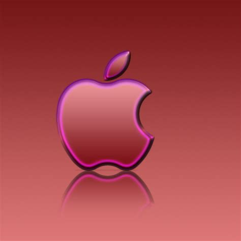 hot pink apple wallpaper wallpapersafari