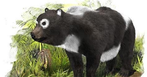 white wolf prehistoric panda   spaingiant