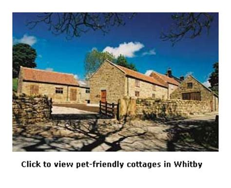 Cottages In Whitby Friendly friendly self catering cottages in whitby