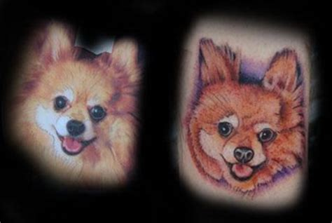 pomeranian portrait tattoos