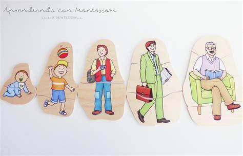 imagenes ciclo de vida de una persona para imprimir el ciclo de la vida de una persona para colorear