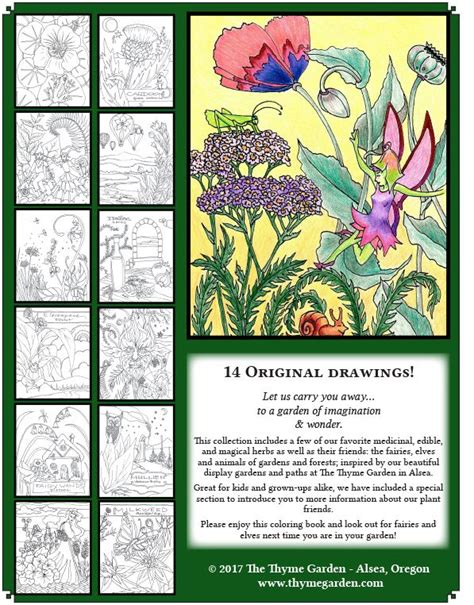 botanicals and friends a playful therapy colouring book books herbs friends coloring book