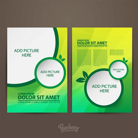 two page brochure template two sided green brochure template vector