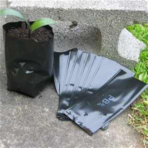 Hedge Planter Bag Medium planter bags pb 3 egmont seed company ltd seed sales