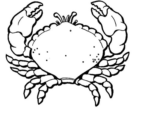 free printable crab coloring pages for