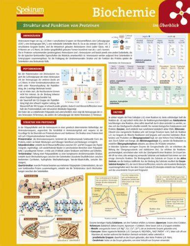 Wie Züchte Ich Tomaten 5109 by Proteine Lexikon Der Biochemie