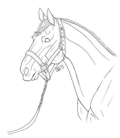 ivy joy coloring pages wild horse head coloring pages hot girls wallpaper