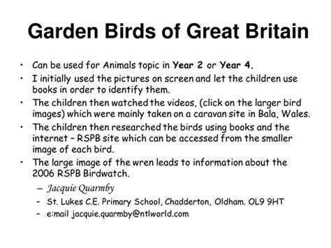 pattern recognition nrich garden birds of great britain by jquarmby uk teaching