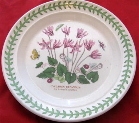 English Porcelain Decorative Plate 18 5cm Diam The The Botanic Garden Circa 1818 Vase
