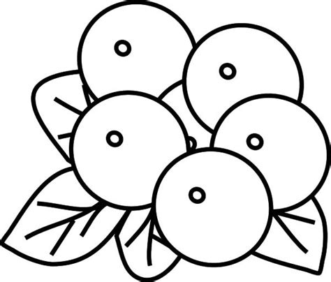 blueberry colouring pages