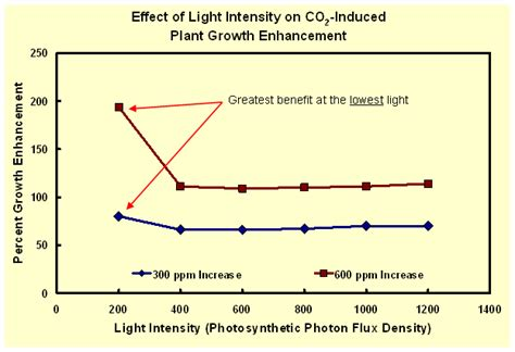 plant growth light intensity light benefits of co2 carbon dioxide