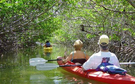 lazy key west lazy key west kayak and paddleboard tours rentals