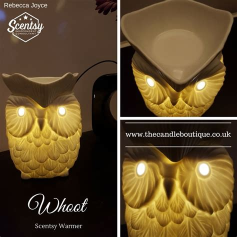 scentsy owl warmer light bulb whoot owl scentsy warmer the candle boutique scentsy