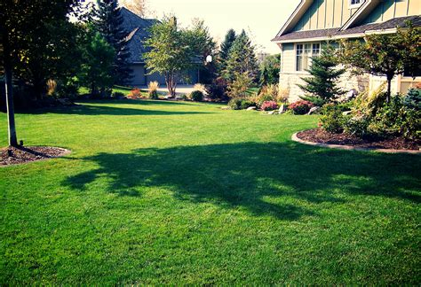 lawn care great goats landscapinggreat goats landscaping