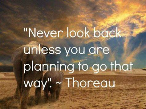 Tumblrtee Never Look Back quotes never look back unless you are planning to go that way celebratequotes