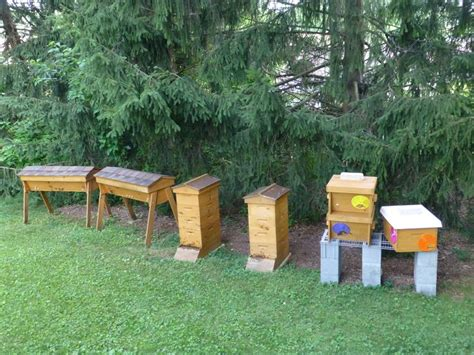 backyard apiary pin by kenny point on backyard beekeeping