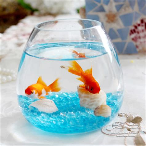 My Fish Tv New Products Goldfish Mini Tank Filter Aquarium Mini aliexpress buy aquarium fish tank aquarium clear glass for your desk decor mini the