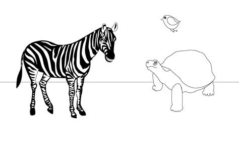 Zebra Outline Picture by Gallery For Gt Zebra Outline Printable