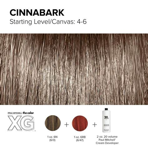 paul mitchell the color chart best 25 paul mitchell color ideas on paul