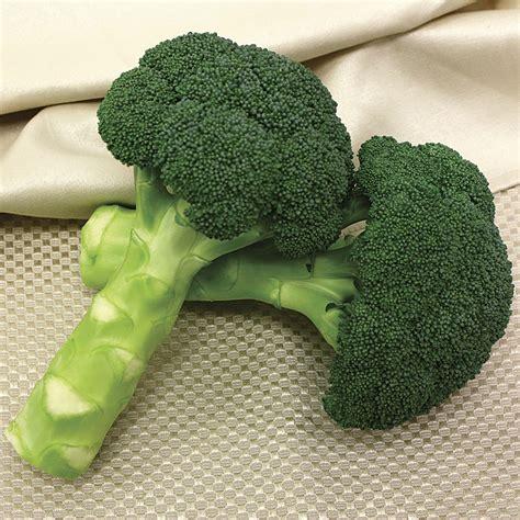 ecocola hybrid european vegetable dye for hair green magic hybrid broccoli seeds