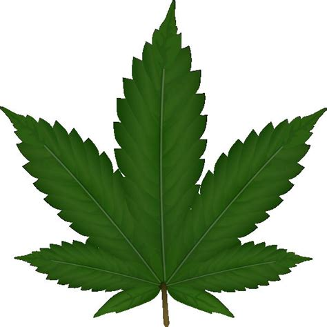 weed blank template imgflip