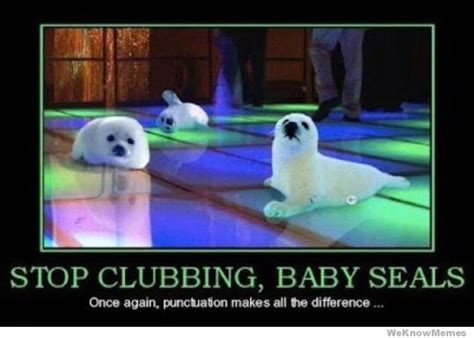 Baby Seal Meme - stop clubbing baby seals weknowmemes