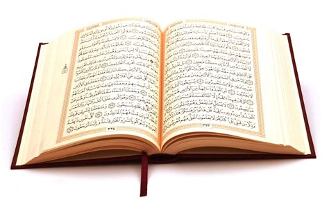 al quran kareem word  word translation  top reciter qari tadeebulqurancom