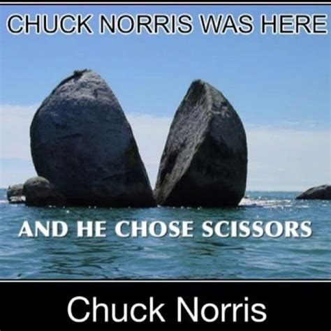 best chuck norris lines 17 best images about chuck norris stuff on