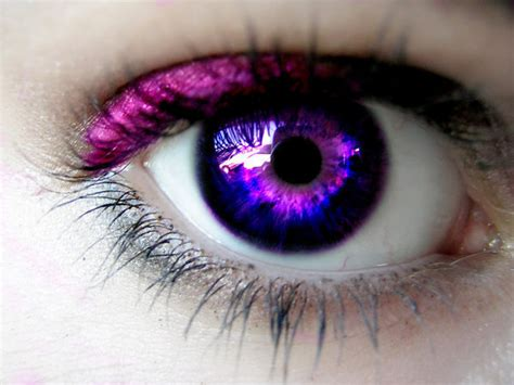 purple eye color purple eyes eyes photo 5092319 fanpop