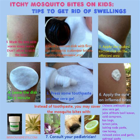 how to get rid of mosquitoes in bedroom how to get rid of mosquitoes in bedroom 28 images how