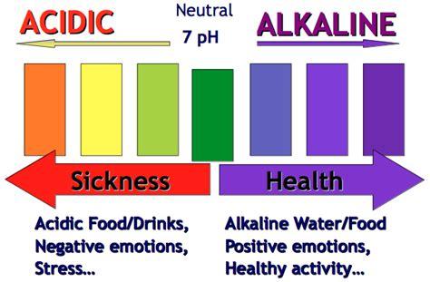 Air Alkali Holo Ph 8 kangen water medan kangen water medan