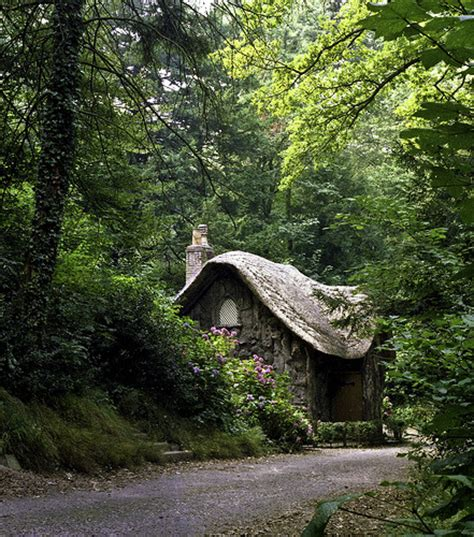 Cottage In The Woods by Blaise Woods Bristol