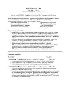 Sales Auditor Sle Resume by Auditors Resume Sales Auditor Lewesmr