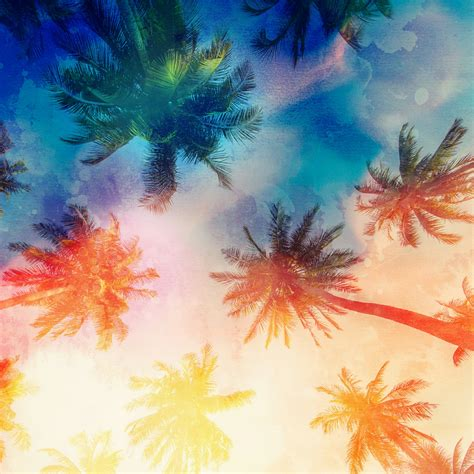 wallpaper abstract qhd palm trees abstract qhd wallpaper 2560x2560 wallpaper