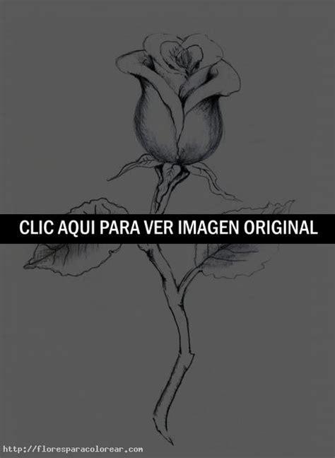 imagenes de rosas para dibujar flores dibujos a lapiz u 2128627879 with design photos