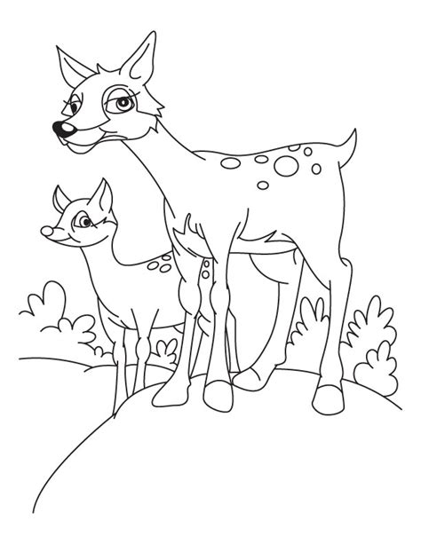 the gallery for gt doe and fawn deer drawing