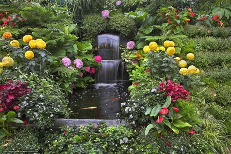 imagenes de paisajes rosas image gallery naturaleza con flores fotos