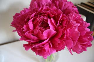 dwell and tell pink peonies dwell and tell pink peonies