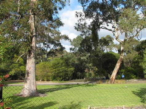 Wittunga Botanic Gardens Wittunga Botanic Gardens Part 1 Trevor S Travels
