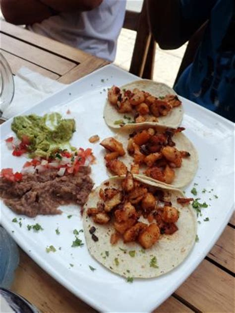 blackened fish tacos picture of the thirsty cougar