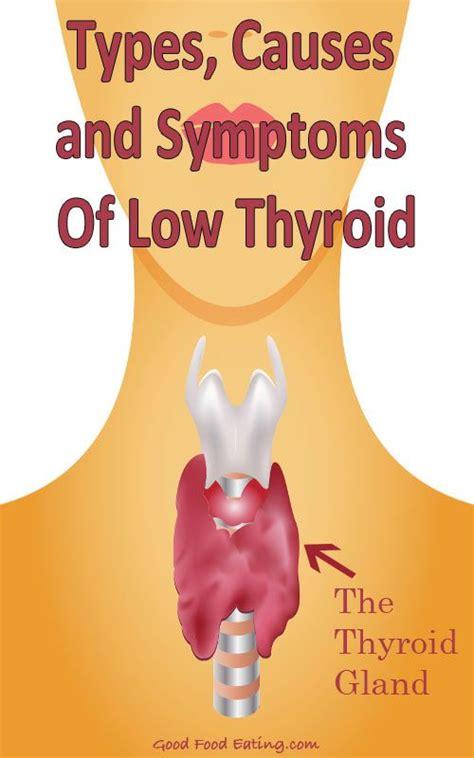 Does Detox Hurt Thyroid by 25 B 228 Sta Symptoms Of Low Thyroid Id 233 Erna P 229