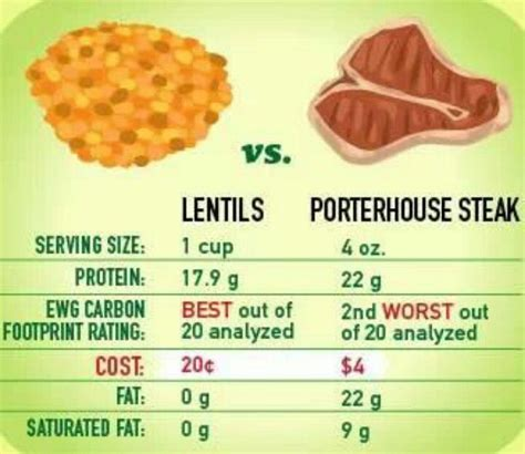 protein lentils lentils vs protein food and drink