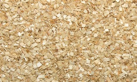 aspen bedding for rats aspen bedding for rats wood bedding for rodents