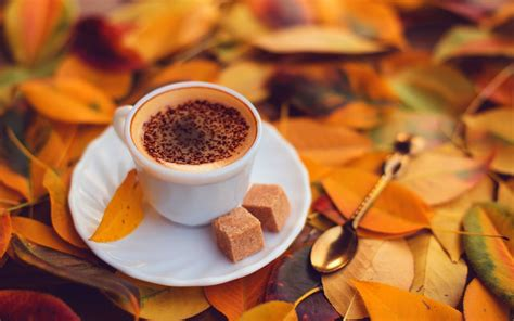 coffee autumn wallpaper coffee with yellow autumn leaves wallpapers 1152x720