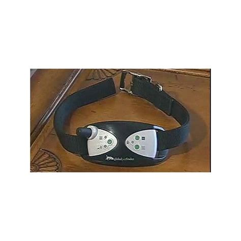 gps for dogs what are gps microchips and collars for dogs information and details about using a
