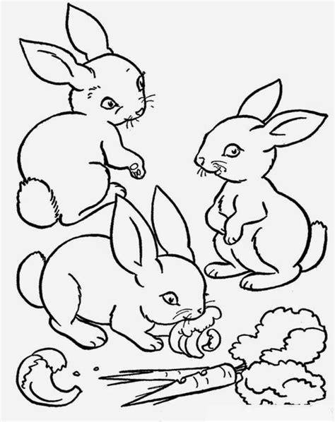 Gambar Mewarnai Kelinci ~ Gambar Mewarnai Lucu
