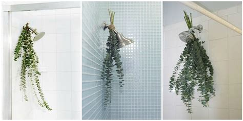 eucalyptus bath bouquets are the easiest way to make