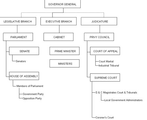 structure of the branches of government government details