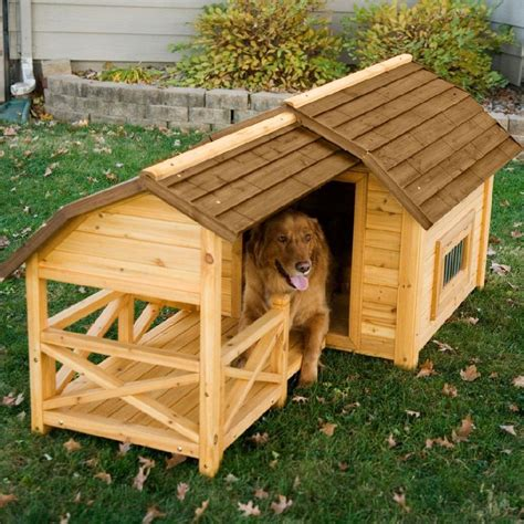 cute dog houses cute dog houses time to take your pooch uptown infobarrel
