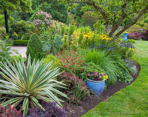 garten yucca vashon island wa perennial garden bed featuring